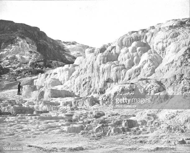 Minerva Terrace Yellowstone Park USA circa 1900 There are thought to be about 1000 geothermal features in Yellowstone including geyser basins hot...