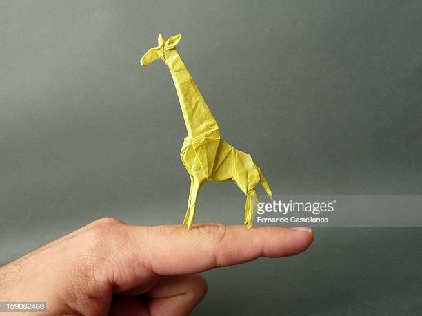 Mini Girafa - Satoshi Kamiya