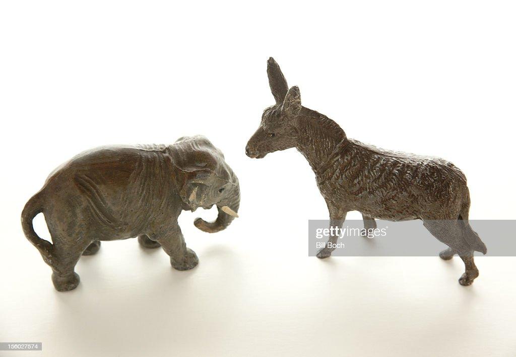 Miniature donkey confronts elephant : Stock Photo