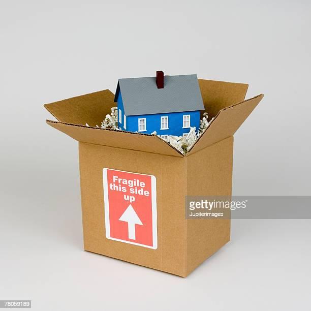 Miniature house in cardboard box