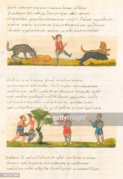 Miniature Oppien's collection on hunting here wolf hunting 15th century Paris Bibliotheque Nationale