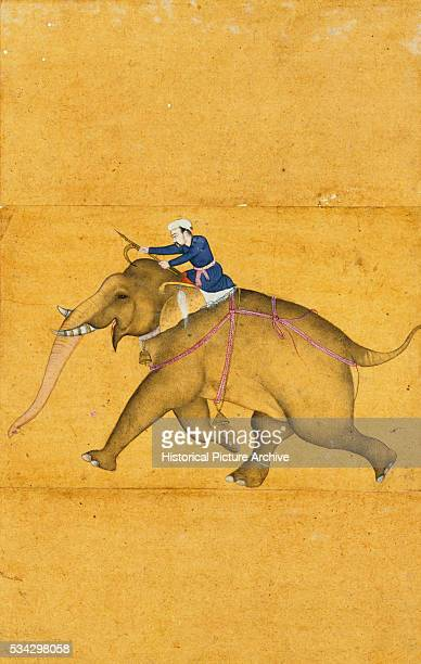 Miniature Painting of Mahout Riding Elephant