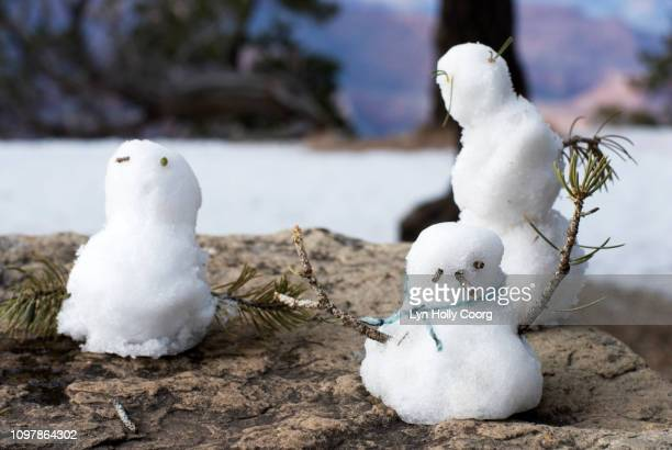 miniature snow people - lyn holly coorg stock pictures, royalty-free photos & images