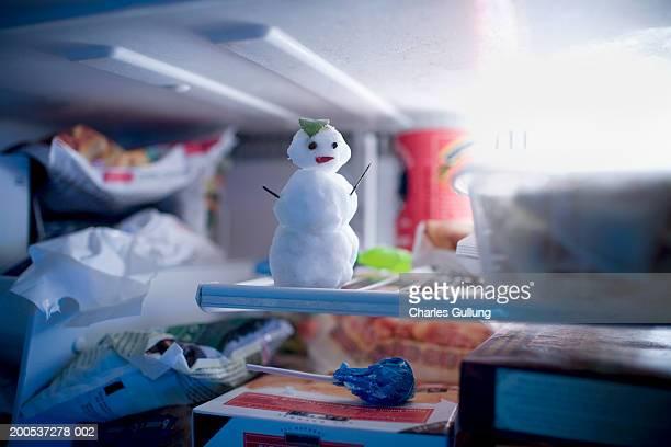 miniature snowman in freezer (focus on snowman) - 冷凍庫 ストックフォトと画像