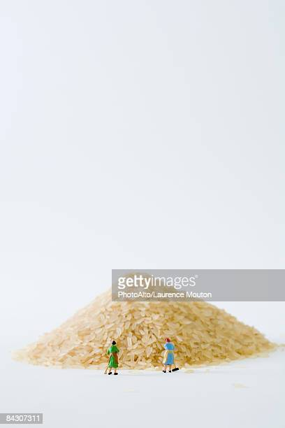 miniature women sweeping large pile of rice - human representation stock pictures, royalty-free photos & images