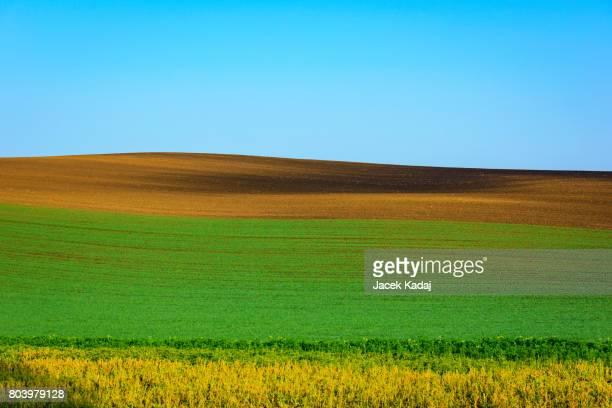 Minimal landscape of South Moravia