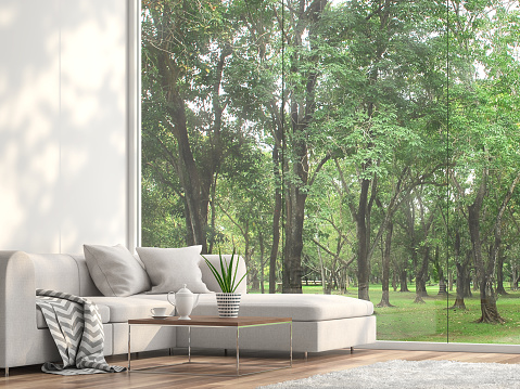 Minimal sofa located at the window with garden view 3d render 1066863894