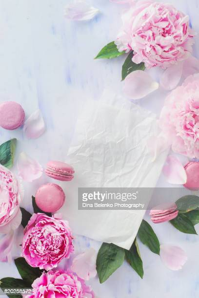 Minimal styled flat lay with peony flowers, petals and macaroon almond cookies on a pastel background with copy space