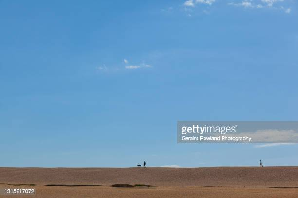 minimal summer stock image - geraint rowland stock pictures, royalty-free photos & images