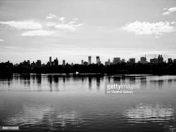 Minimal View of New York Central Park Skyline