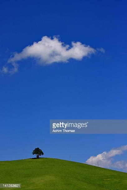 minimalistic landsape - achim thomae stock-fotos und bilder
