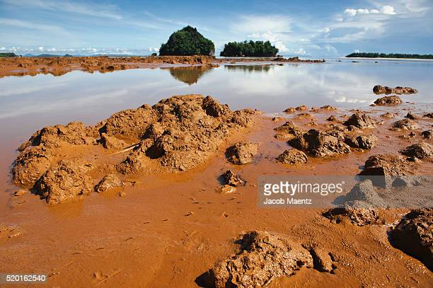 mining siltation at the mouth of a mindanao river - 5セントコイン ストックフォトと画像