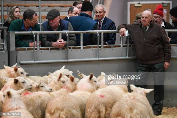 Minister for the Cabinet Office David Lidington visits United Auction on November 29 2018 in Stirling Scotland Mr Lidington will attend a joint...