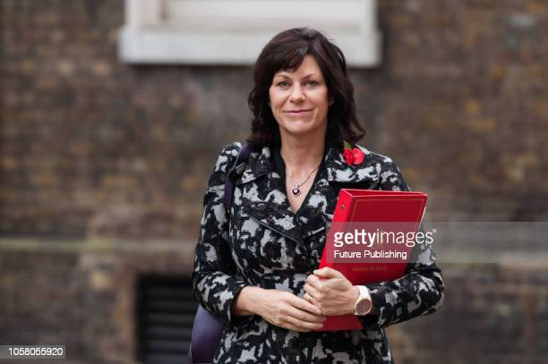 Minister of State for Energy and Clean Growth Claire Perry arrives for a weekly Cabinet meeting at 10 Downing Street in central London November 06...