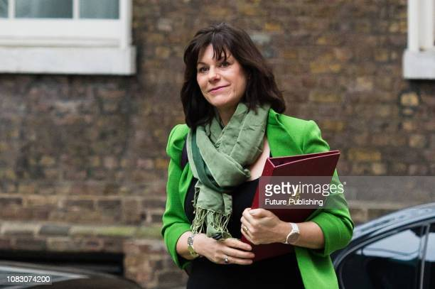 Minister of State for Energy and Clean Growth Claire Perry arrives for a weekly Cabinet meeting at 10 Downing Street in central London MPs in the...