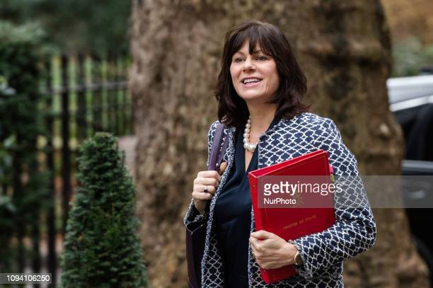 Minister of State for Energy and Clean Growth Claire Perry arrives for a weekly Cabinet meeting at 10 Downing Street in central London on 05 February...