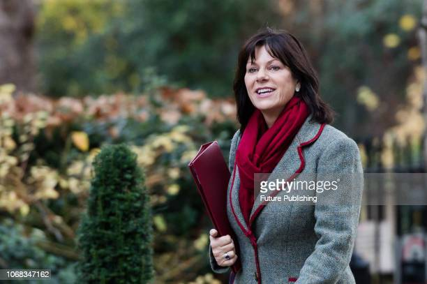 Minister of State for Energy and Clean Growth Claire Perry arrives at 10 Downing Street in central London for a Cabinet meeting as Parliament starts...