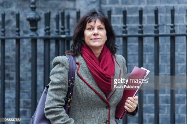 Minister of State for Energy and Clean Growth Claire Perry leaves after a Cabinet meeting in 10 Downing Street Members of Parliament begin the Brexit...