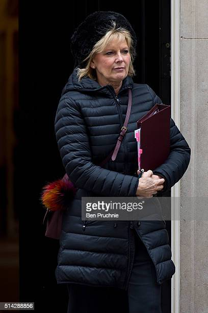Minister of State for Small Business in the Department for Business Innovation and Skills Anna Soubry departs Number 10 Downing Street after...