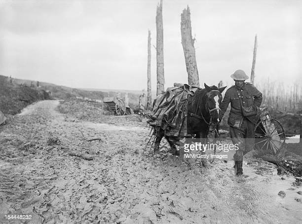 Ministry Of Information First World War Official Collection A pack horse loaded with rubber trench boots is led through the mud near Beaumont Hamel...