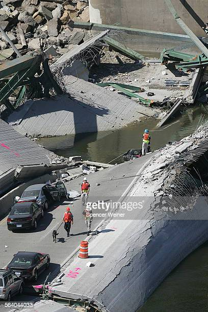 Minneapolis, Minn.– Search and recovery teams with recovery dogs working to locate survivals, or bodies, in the area of collapse of the Interstate...
