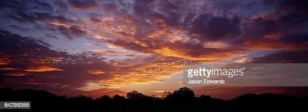 A brilliant sunset nestled over a tropical rainforest canopy.