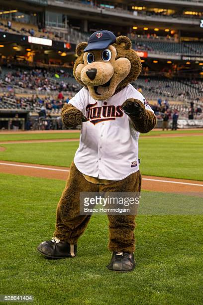 Minnesota Twins mascot TC Bear against the Cleveland Indians on April 26 2016 at Target Field in Minneapolis Minnesota The Twins defeated the Indians...