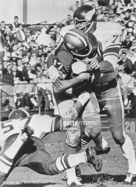 Minnesota Vikings defensive end Jim Marshall sacks San Francisco 49ers quarterback Bill Kilmer for a five yard loss during the first quarter of the...