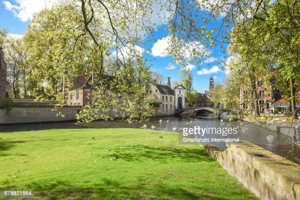 minnewater lake (lake of love) on a perfect spring day with romantic sky, saint savior cathedral bell tower on background, beguinage and swans, bruges, belgium - bruges stock pictures, royalty-free photos & images