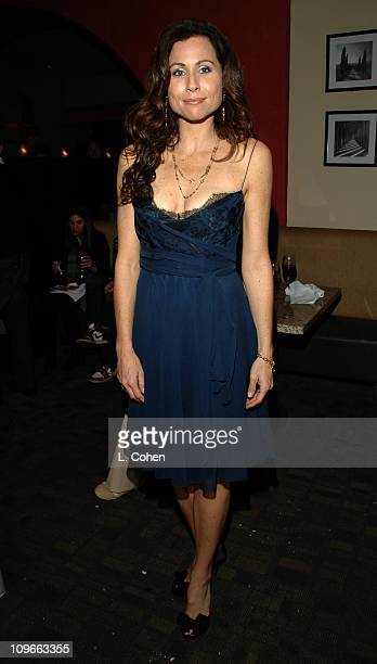 Minnie Driver during The Fox All-Star Winter 2007 TCA Press Tour Party - Red Carpet and Inside at Villa Sorriso in Pasadena, California, United...