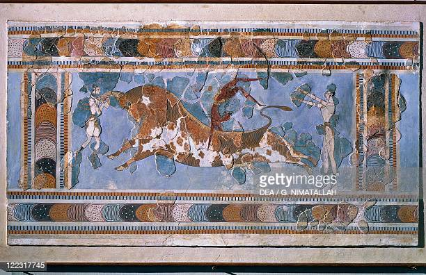 Minoan civilization 16th17th century bC Reassembled fresco depicting bullleaping ritual or taurokathapsia circa 17001450 bC From the Palace of...