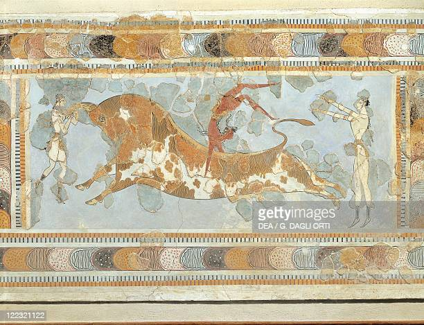 Minoan civilization 18th15th century bC Fresco depicting a taurokathapsia From the east wing of the Palace of Knossos