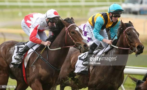 Minoan Spirit ridden by John Allen wins the Santons of Bendigo Maiden Plate at Bendigo Racecourse on July 23 2017 in Bendigo Australia
