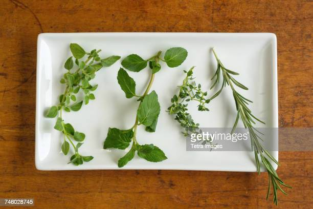 Mint, rosemary, oregano and thyme leaves on white plate