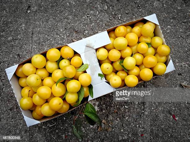 Mirabelle plums in basket