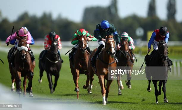 Mirage Mac ridden by James Doyle wins the Racing TV Novice Median Auction Stakes at Newbury Racecourse on September 18 2020 in Newbury England
