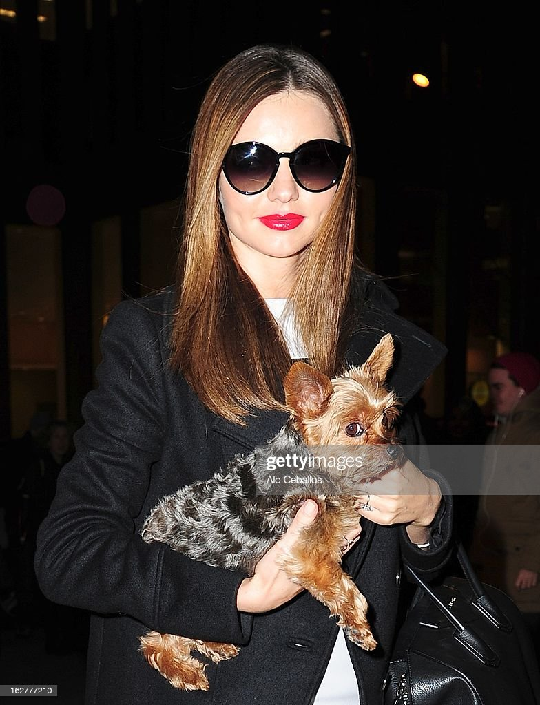 Celebrity Sightings In New York City - February 26, 2013