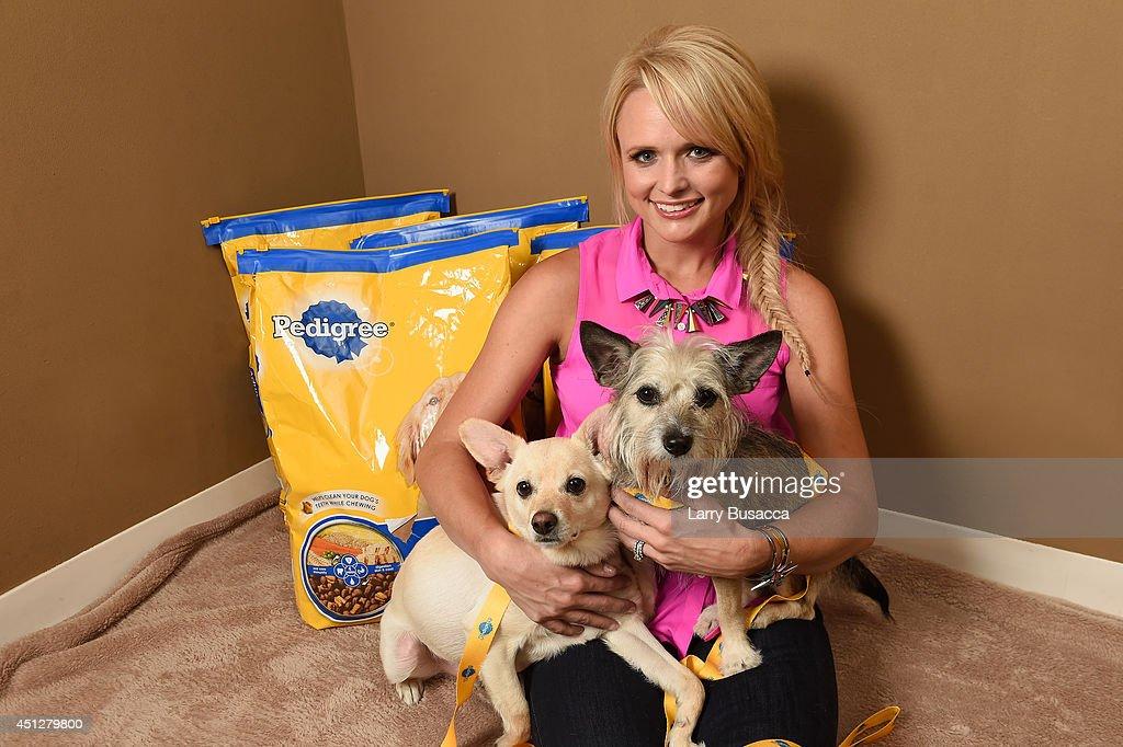 Miranda Lambert And Pedigree Brand Unite To Help Shelter Dogs : News Photo