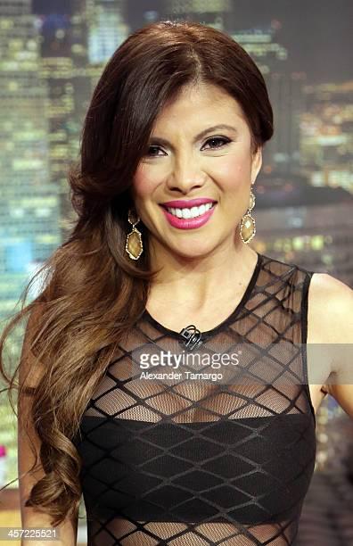 Mirella Grisales poses at Telemundo Studio on December 16, 2013 in Miami, Florida.
