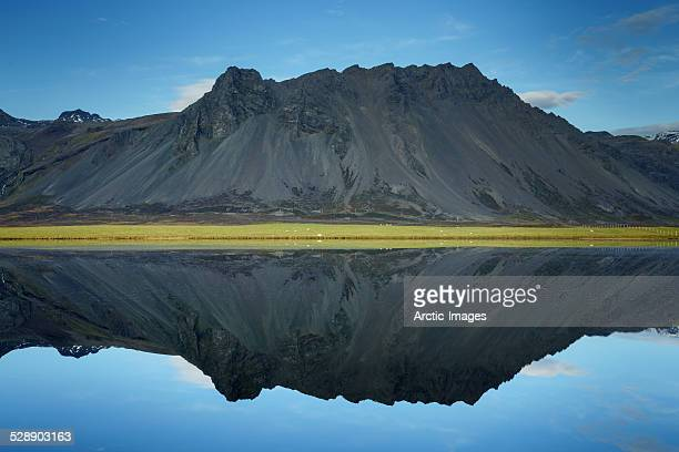 Mirror image of mountain with sheep grazing.