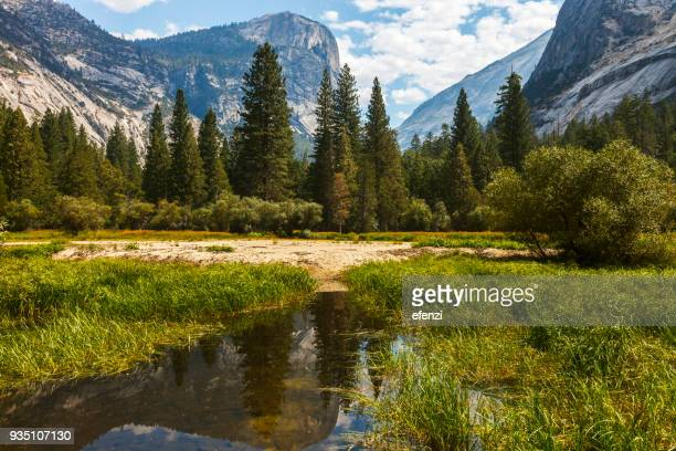 mirror lake in yosemite national park - mirror lake stock pictures, royalty-free photos & images
