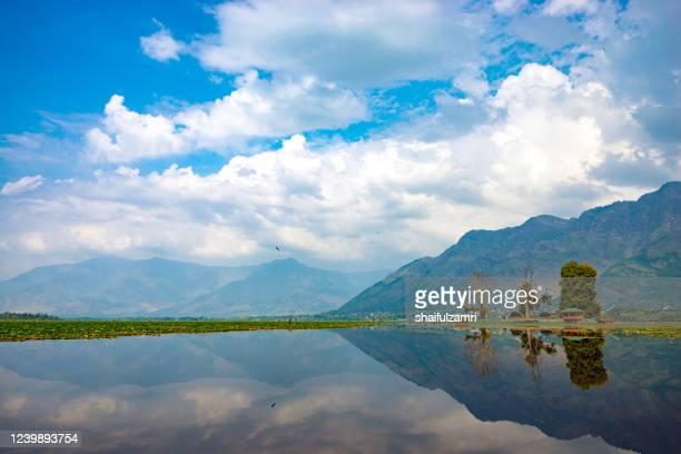 mirror lake of dal lake in kashmir, india - shaifulzamri foto e immagini stock