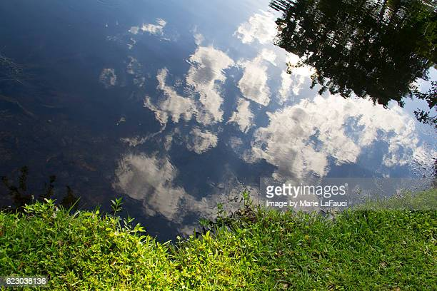 mirror reflection of blue sky, clouds and sun reflected on lake - marie lafauci stock pictures, royalty-free photos & images