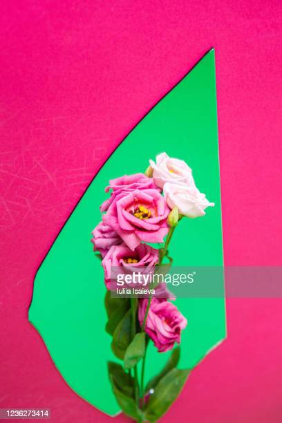 mirror shard with flowers reflection - mirror object stock pictures, royalty-free photos & images