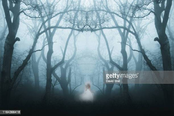 a mirrored, duplicate effect of a spooky, eerie forest in winter, with the trees silhouetted by fog. with a ghostly woman in white. - aparición acontecimiento fotografías e imágenes de stock