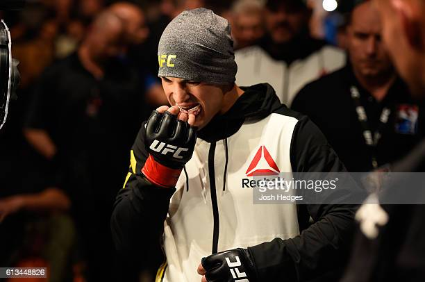 Mirsad Bektic of Bosnia prepares to enter the octagon before facing Russell Doane in their featherweight bout during the UFC 204 Fight Night at the...