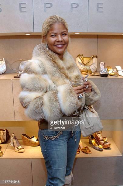 Misa HiltonBrym during Giuseppe Zanotti Design Boutique Trunk Show December 8 2005 at Giuseppe Zanotti Design Boutique in New York City New York...