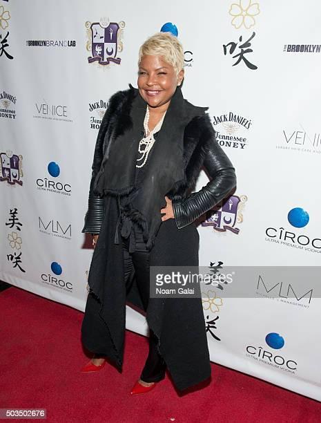 Misa Hylton attends the Misa Hylton Fashion Academy #SKYSTHELIMIT networking informative at Taj Lounge on January 5 2016 in New York City
