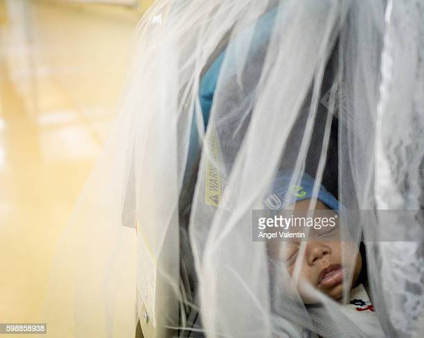 Misael Carrasquillo 2 months old sleeps in a mosquito net covered baby stroller next to his identical twin brother Ismael during a visit for regular...