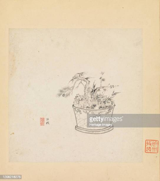 39 Bonsai Tree Drawing Photos And Premium High Res Pictures Getty Images